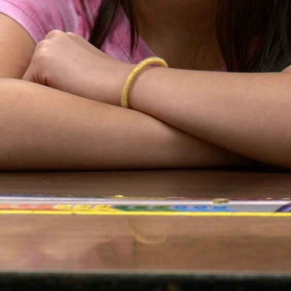 safer schools kid class pic_1534376328429.jpg.jpg