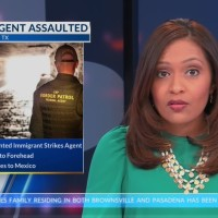 Undocumented_Immigrant_Assaults_BP_Offic_9_20181205041207