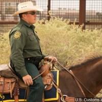 Border Patrol Horse_1549237943168.jpg.jpg