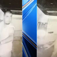 Person of interest motor vehicle theft brownsville_1551649768019.png.jpg